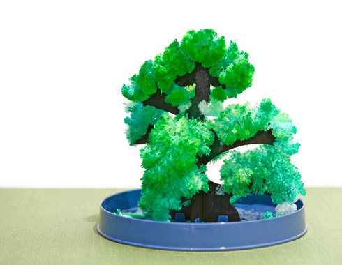 Magic Bonsai